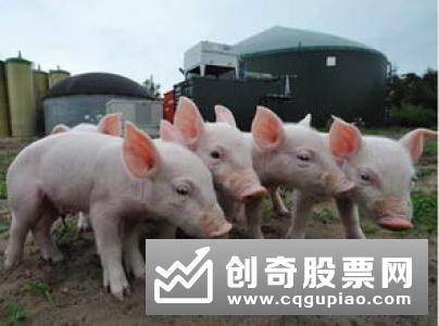 两部门公告:解除美国禽肉进口限制